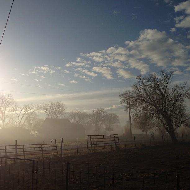 #nofilter morning fog #skyporn #cloudporn